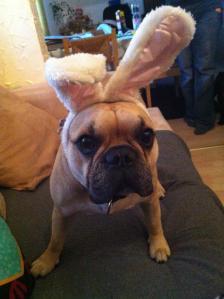 Easter-Jasper